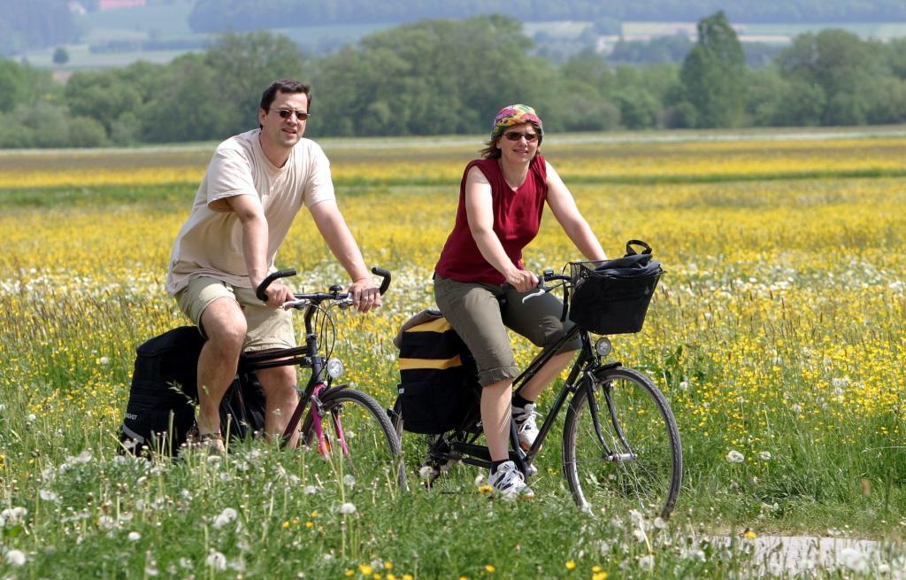 Radfahren_Donauradweg